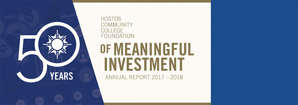 Foundation Annual Report 2017 - 2018