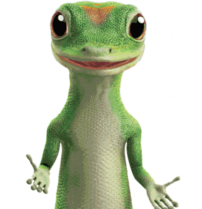 Car Insurance For College Students Geico