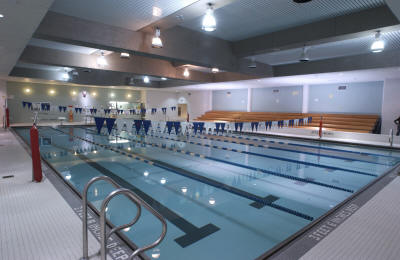 Virtual tour swimming pool hostos community college for Virtual pool builder