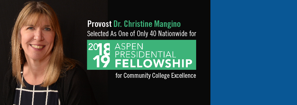 2018/19 ASPEN Presidential Fellowship
